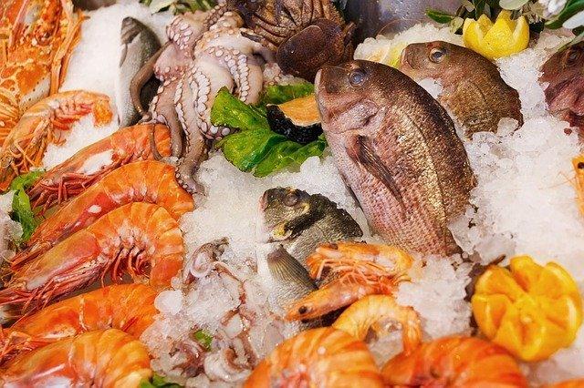protein foods-thediaryforlife