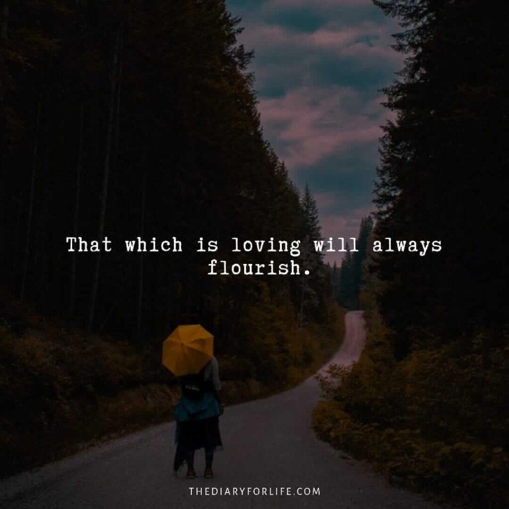 love failure quotes
